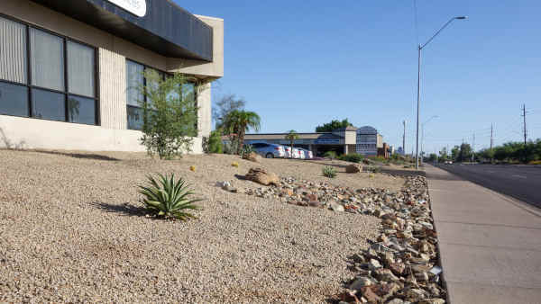 albuquerque xeriscape landscaping - R and S Landscaping Albuuerque NM 505-271-8419