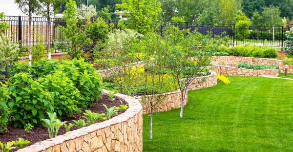 Cost Conscious Backyard Albuquerque Landscaping Strategies