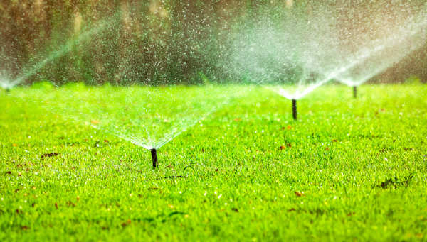 winterize albuquerque irrigation system - R and S Landscaping 505-271-8419