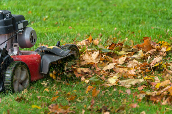 Winterize Your Albuquerque Lawn Call R & S Landscaping 505-271-8419