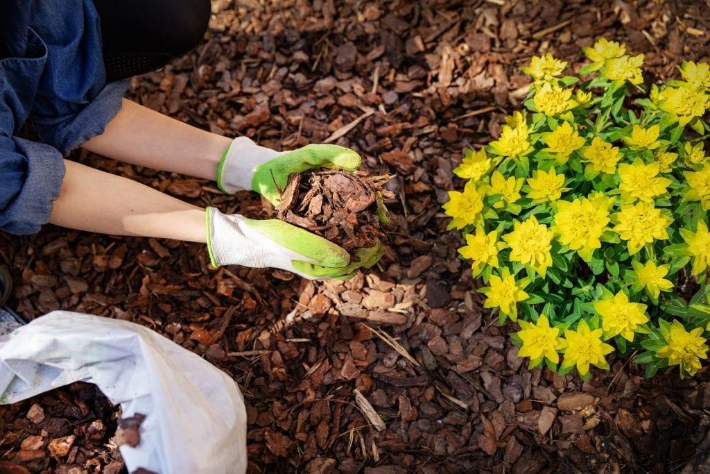 Garden Mulching Albuquerque NM R & S landscaping 505-271-8419