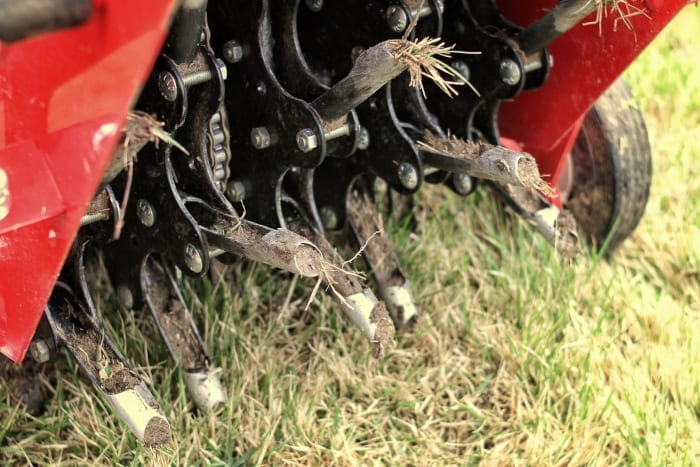 Albuquerque Lawn Aeration Tips - R & S Landscaping 505-271-8419 d