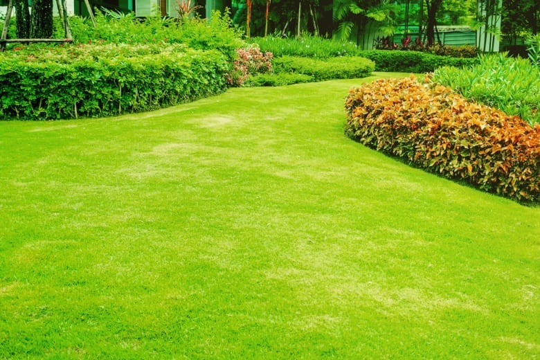 Albuquerque Lawn Aeration Tips - R & S Landscaping 505-271-8419