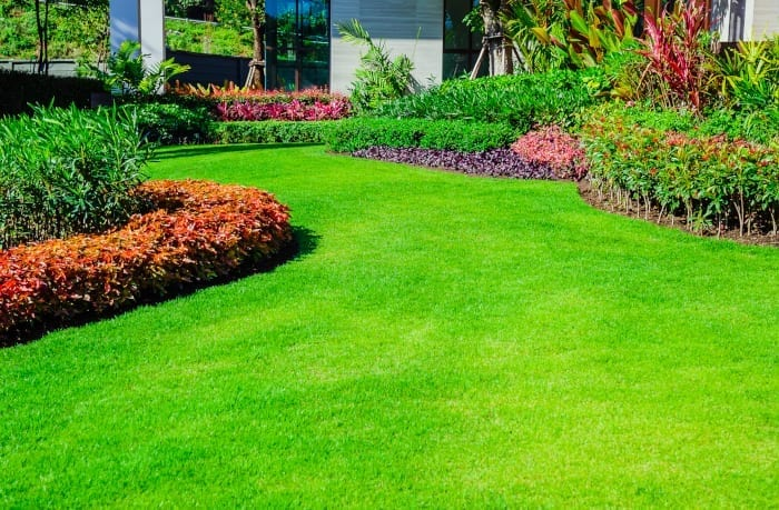 Albuquerque Lawn Mowing Tips - Part One by R & S Landscaping 505-271-8419