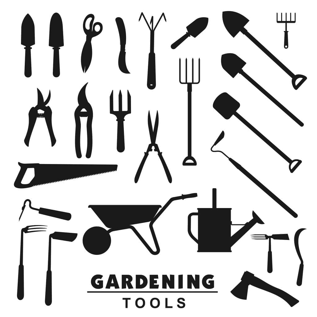 Best Tips On Gardening Tools And Supplies Every Albuquerque
