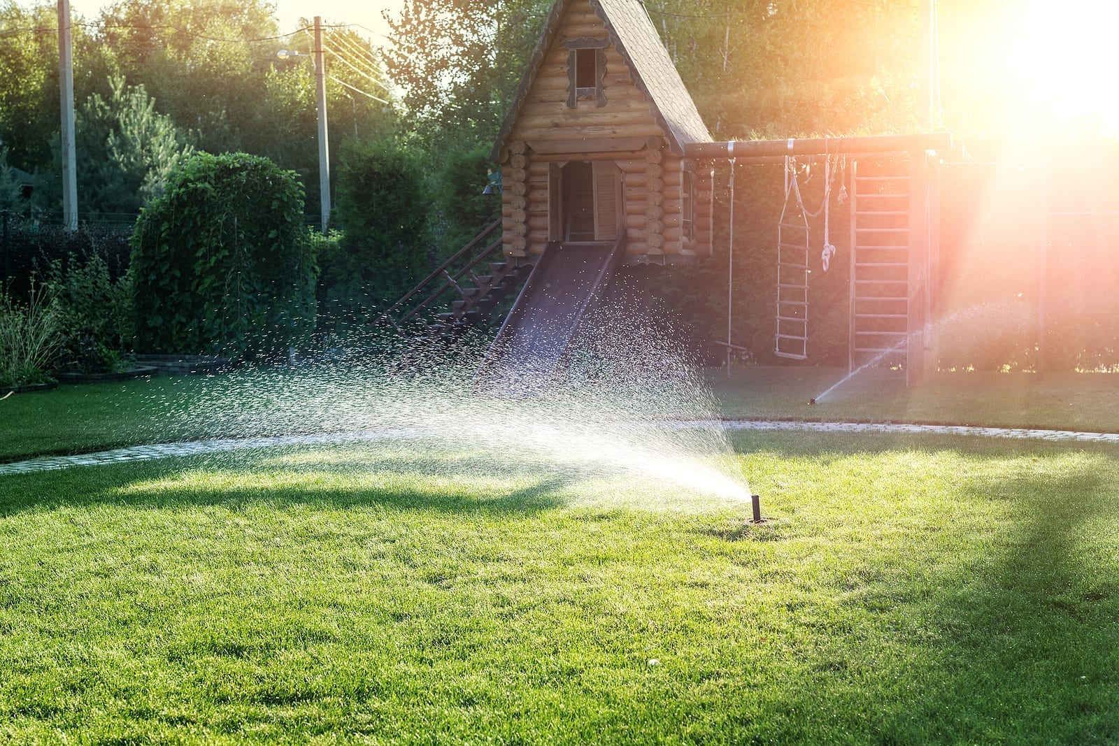 Albuquerque Heat Wave 2020 Garden and Lawn Watering Tips - Part One by R & S Landscaping 505-271-8419 a