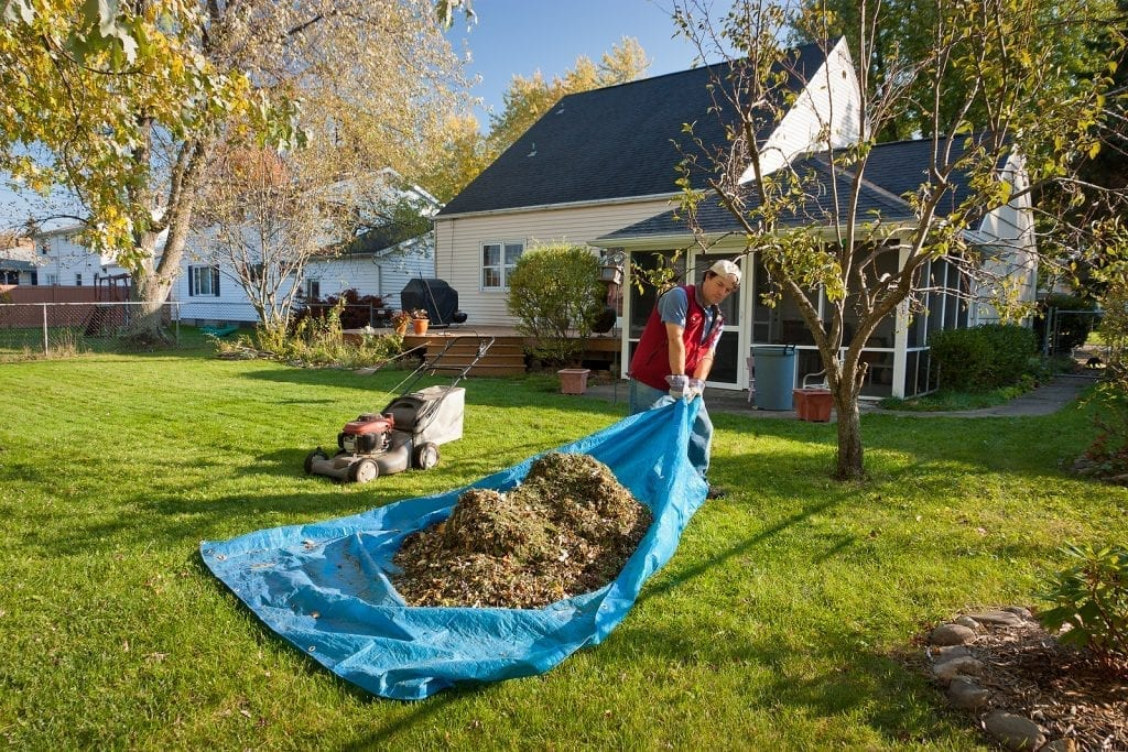 Yard Cleanup Services Albuquerque NM by R & S Landscaping 505-271-8419 a