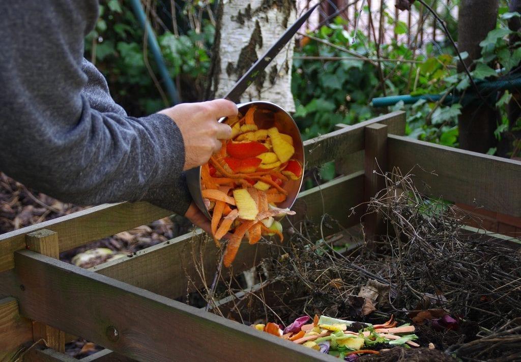 albuquerque garden winterizing