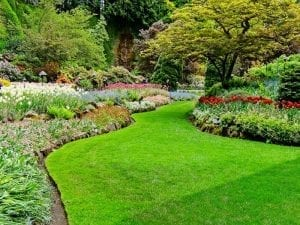 Top Tips for Albuquerque Lawn and Garden Preparation for Spring 2021 by R & S Landscaping 505-271-8419 a