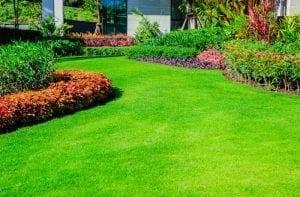 Albuquerque Lawn and Garden Preparation