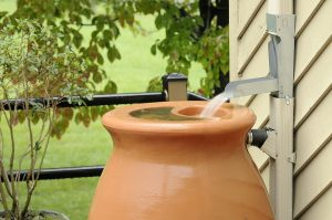 Action Items to Take to Set Up a Rainwater Irrigation System for Your Albuquerque Garden By R & S Landscaping