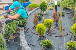 Albuquerque Commercial Building Landscaping Smart Irrigation Tips